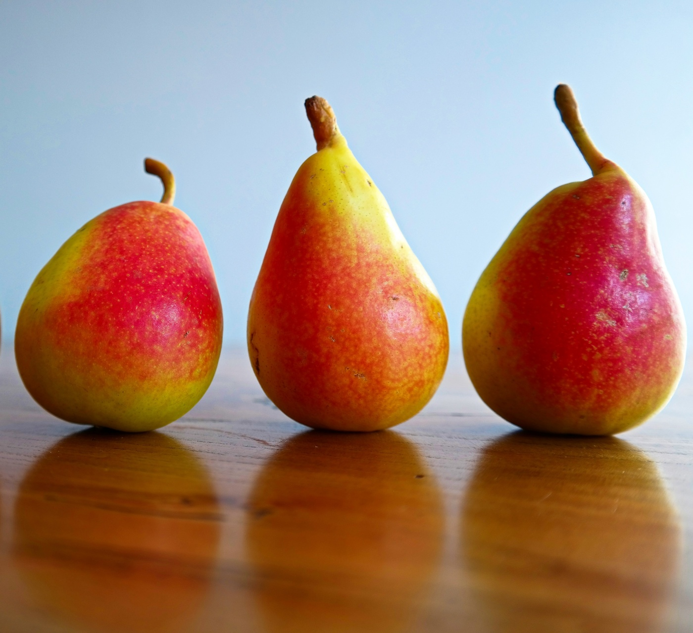 Ercolini pears from Jumilla Spain www.avarietyoffruits.com