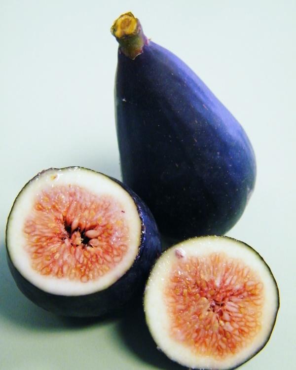 Caroumb variety fig