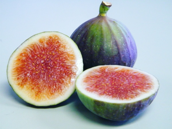 Dauphine variety fig